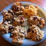 Vegan Oatmeal Craisin Cookies