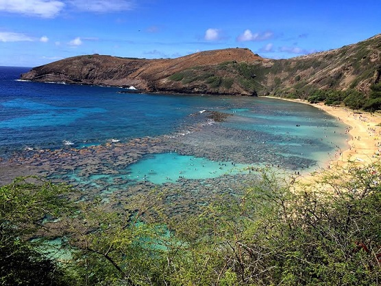 Snorkeling in Hanauma Bay