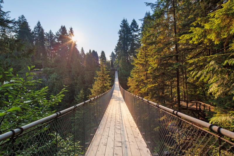 Fall Wallpaper Lake Capilano Suspension Bridge Family Fun Vancouver