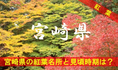 kouyou-mi-3-3152