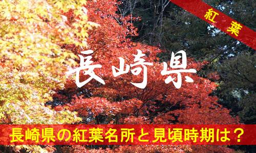 kouyou-na-3-3145