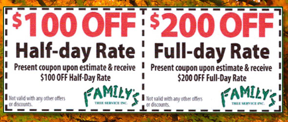 Special Offer Coupon