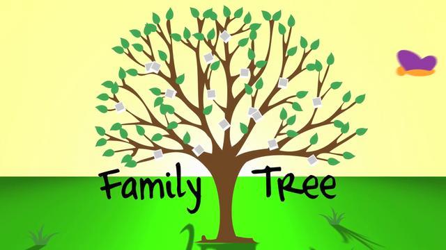 family tree tree