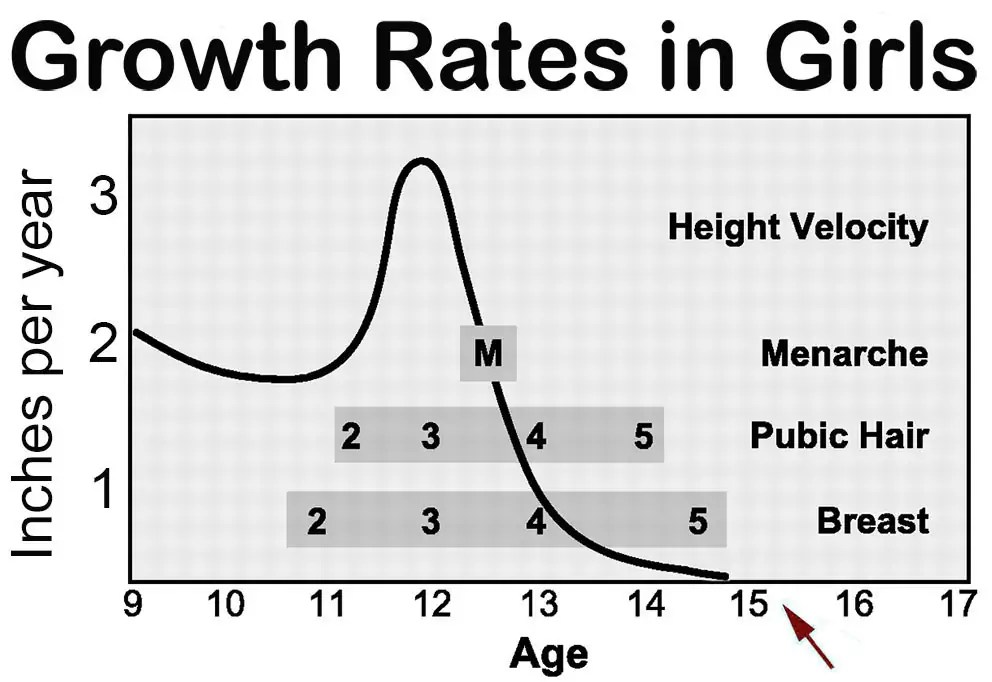 At What Age do Girls Stop Growing? - Famlii