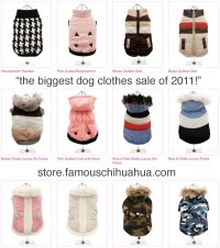 the biggest sale on dog clothes of 2011! shop now while ...