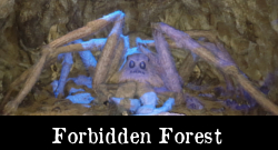 tour - forbidden forest
