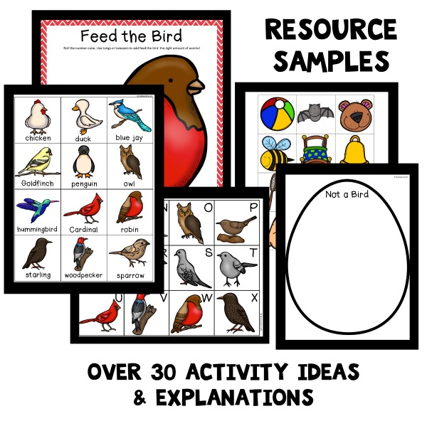 Bird Theme Preschool Activities - Fantastic Fun  Learning