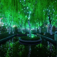 The Utterly Amazing Magic Forest in Shanghai, China