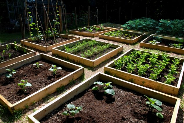 19 Ways How To Build Raised Bed Garden - raised bed garden designs