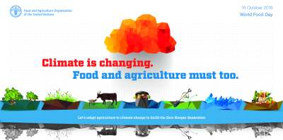 Viet Nam | FAO | Food and Agriculture Organization of the United Nations