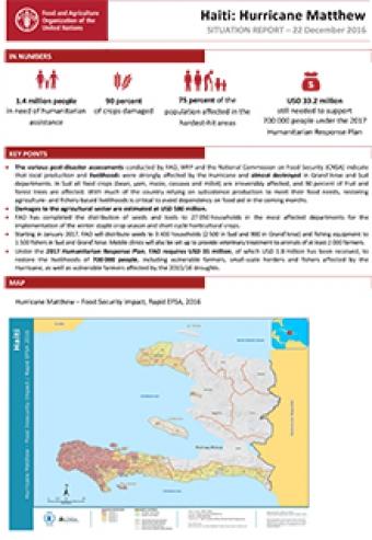 Haiti Hurricane Matthew - Situation report 22 December 2016  FAO
