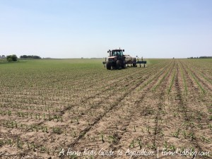 Tractor side-dressing corn