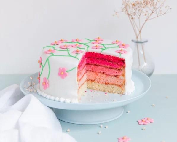 pink-rainbow-cake