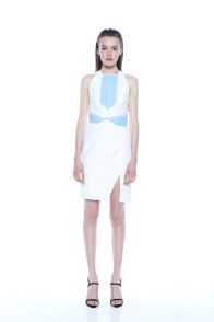 dion-lee-fall-winter-2014-54