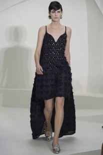 Dior Haute Couture Spring/Summer 2014