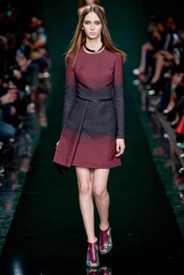 elie-saab-fall-winter-2014-show6