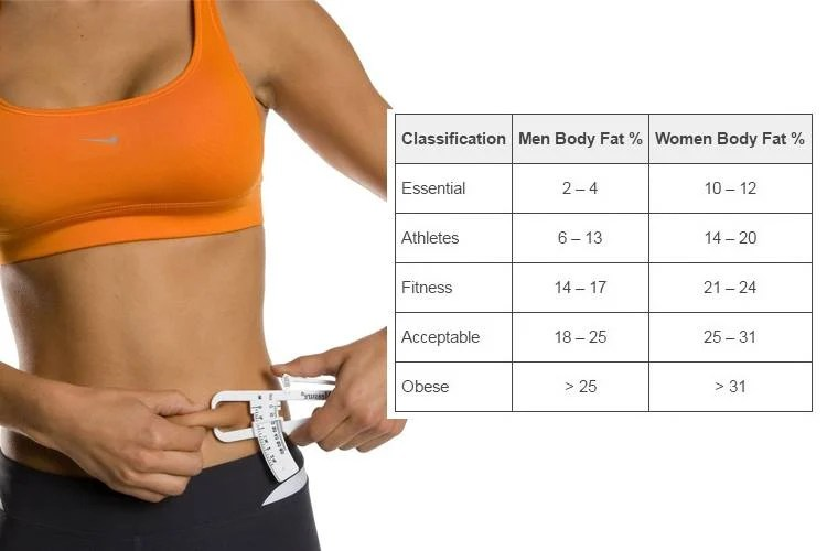 Learn How To Use A Body Fat Percentage Chart - body fat chart