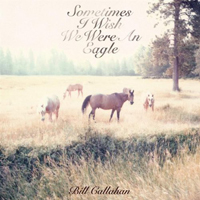 Bill Callahan album cover