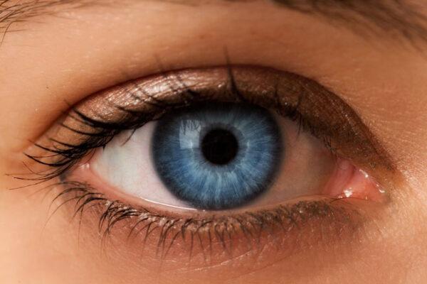Todas as pessoas de olhos azuis estão interligadas por algo maior do que a semelhança física Todas as pessoas de olhos azuis estão interligadas por algo maior do que a semelhança física 2 52