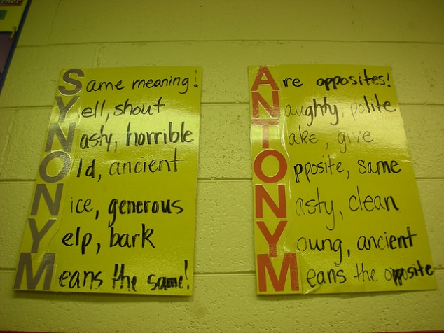 Synonym and Antonym Anchor Charts - FaveThing