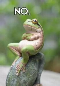 No-frog