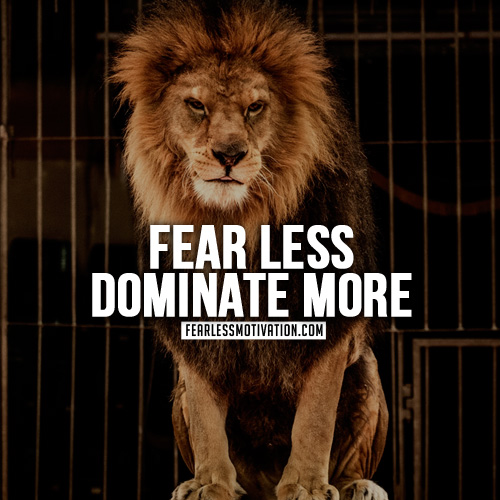 Dbz 1080p Wallpaper Best Dbz Quotes 30 Motivational Lion Quotes In Pictures Courage Amp Strength