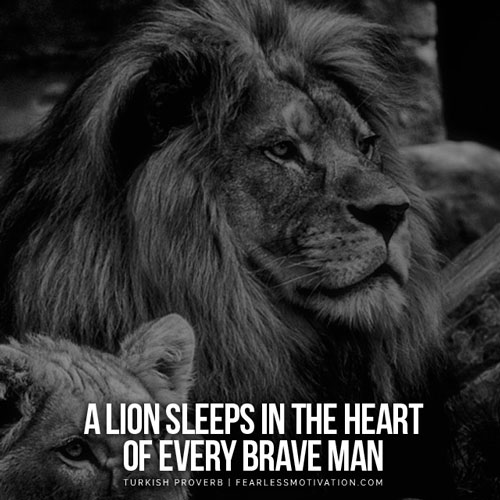 Spiritual Gangster Quotes Wallpaper 30 Motivational Lion Quotes In Pictures Courage Amp Strength