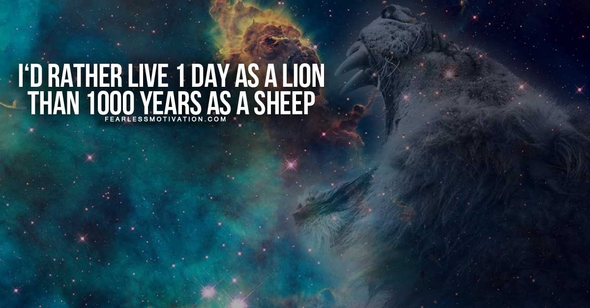 Millionaire Quotes Wallpaper Hd 30 Motivational Lion Quotes In Pictures Courage Amp Strength