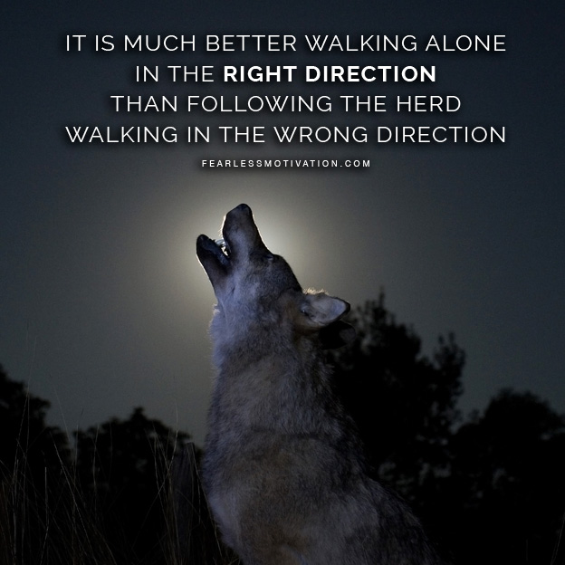 Dark Souls 3 Wallpaper Quote 20 Strong Wolf Quotes To Pump You Up Wolves Amp Wolfpack