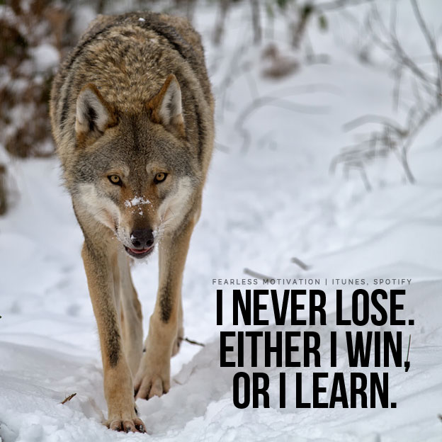 Expectations Quote Wallpapers 20 Strong Wolf Quotes To Pump You Up Wolves Amp Wolfpack