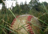 baseball in grass.jpg