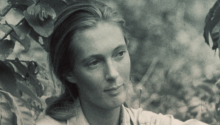 Jane Goodall, la grande primatologue