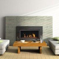 Savannah Elite BL21, Gas, Zero Clearance Fireplace ...