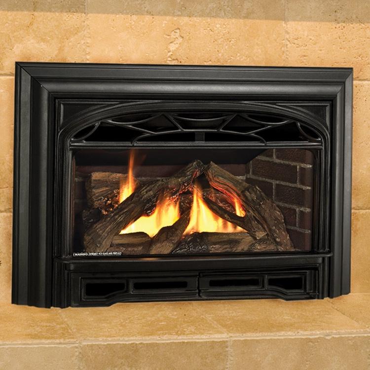 Valor G3 Gas Fireplace Insert Fergus Fireplace