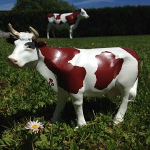 Petite vache avec cornes