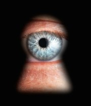 Spying NSA Scandal Surveillance Privacy Private