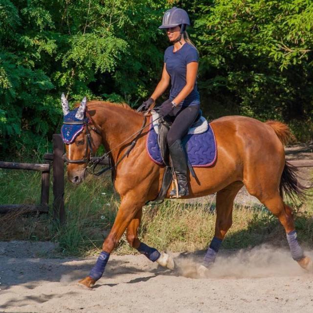 Coordinati! wwwfiammettamerlocom horses horse horsesofinstagram TagsForLikes horseshow horseshoe horsesofinstagram horsestagramhellip