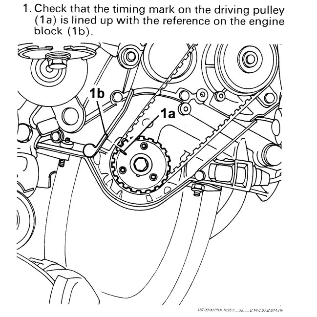 fiat timing belt or chain