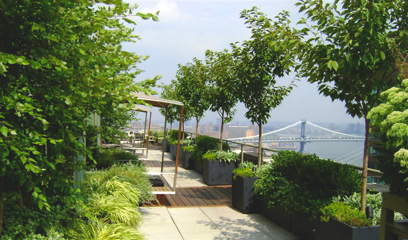 Picture of rooftop garden using fiberglass planters