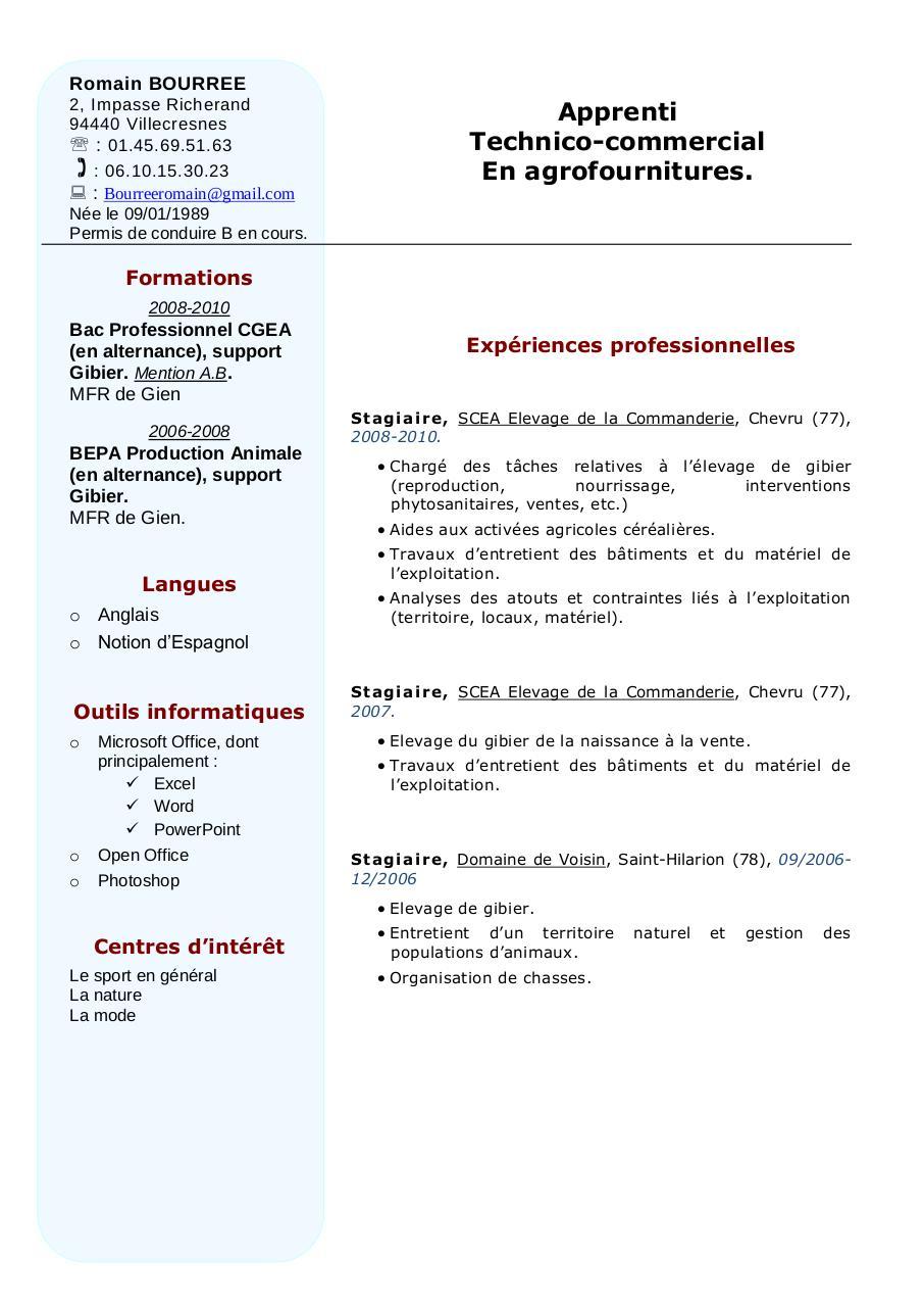 faire un cv exemple pdf