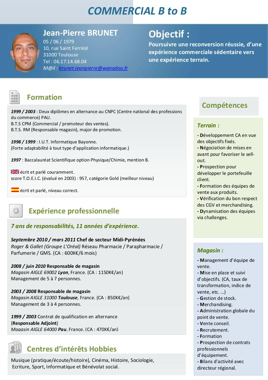 cv contrat alternance informatique