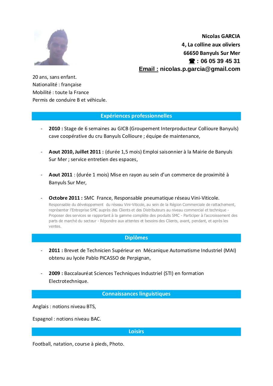 cv niveau bac pdf