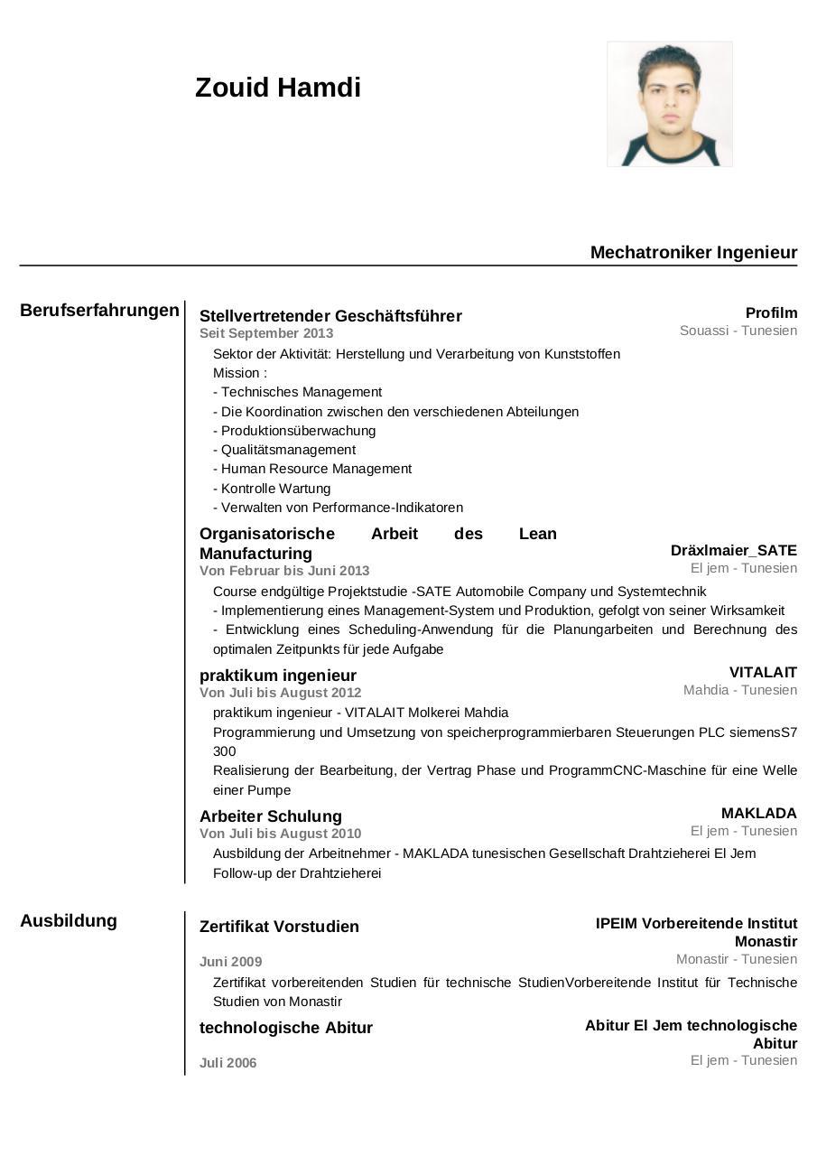 german resume sample