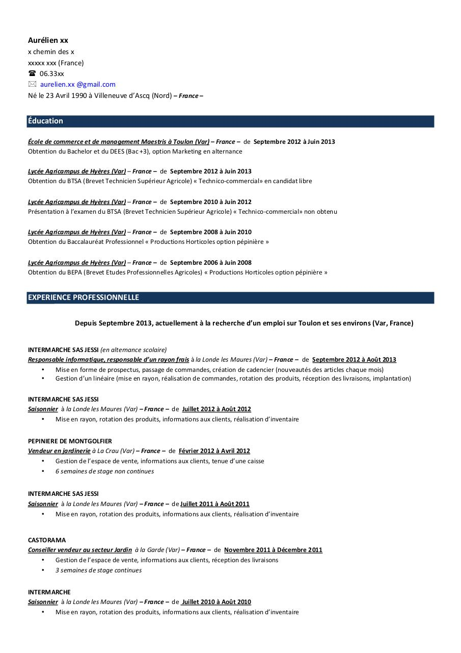 Resume Builder Monster Resume Builder Monster Several Resumes Ezdky Limdns  Org Free Resume Builder App For