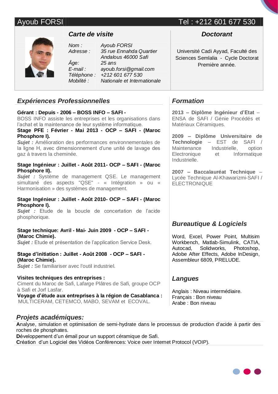 cv informatique linkedin pdf