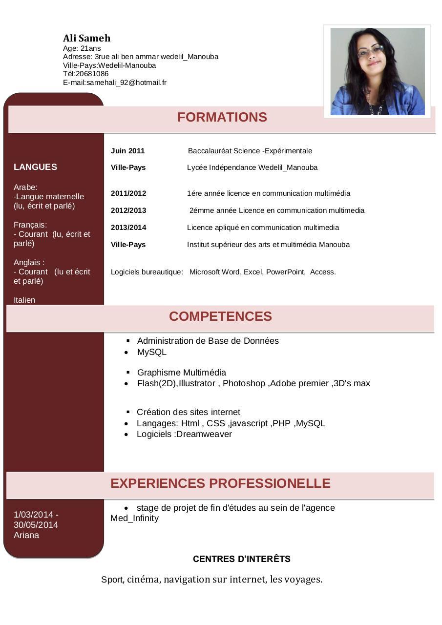 cv en anglais information et communication
