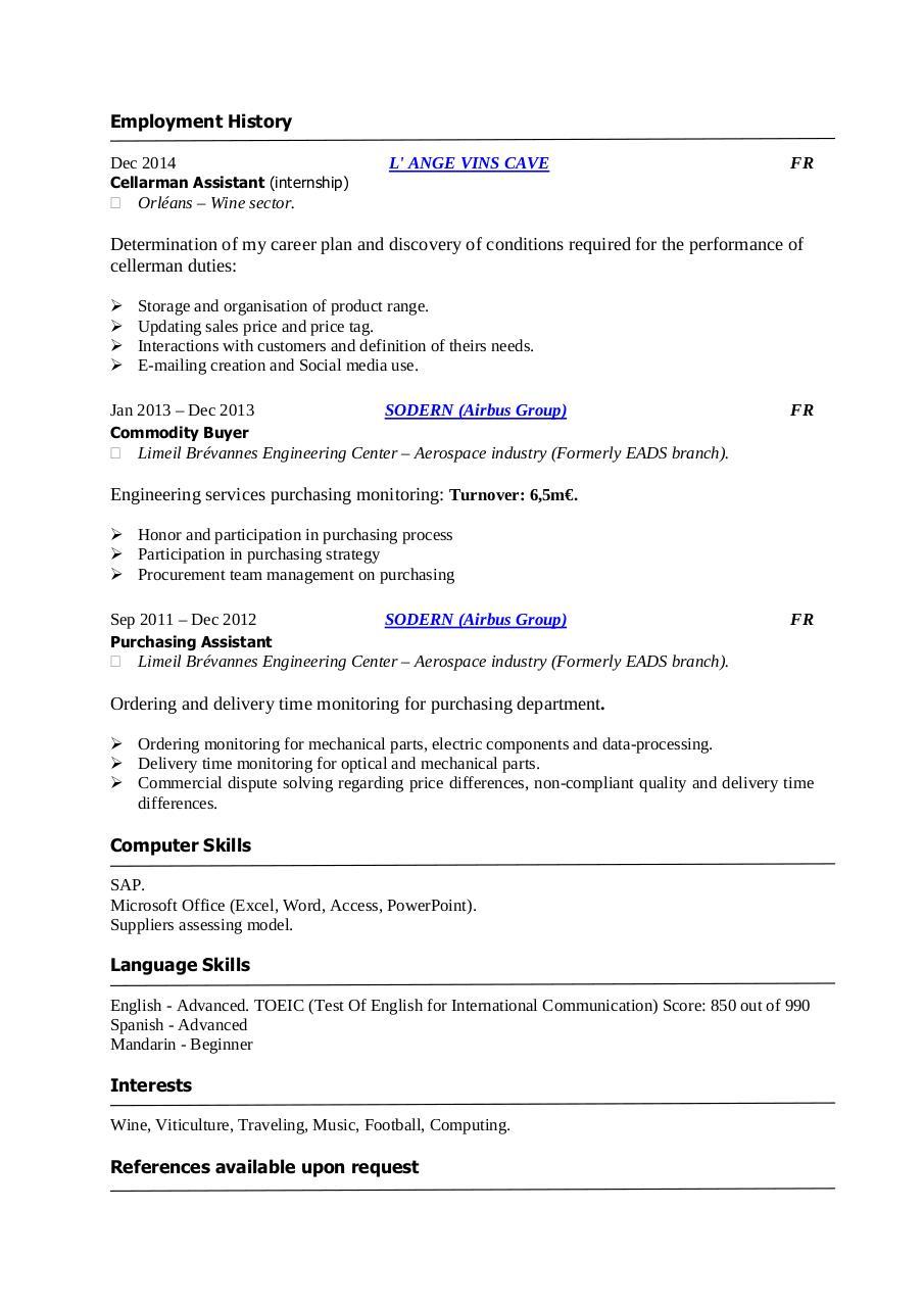 cv anglais skills computer