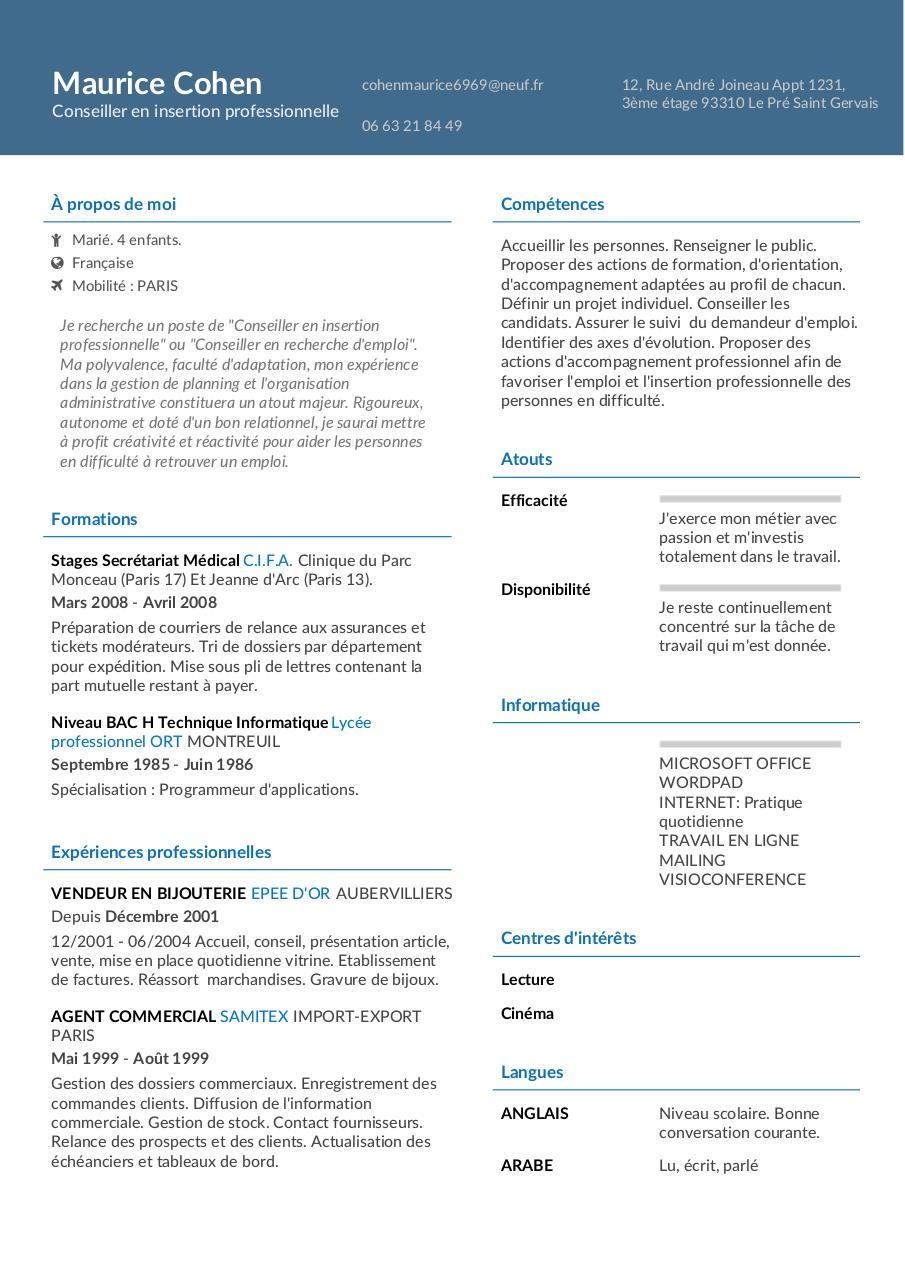 cv conseiller insertion professionnelle