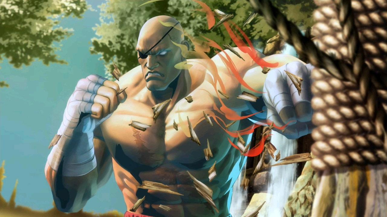 Tekken 6 3d Wallpapers Sagat Street Fighter Page 2