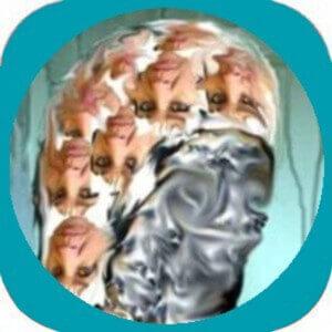 Figunetik App für Android zum Download